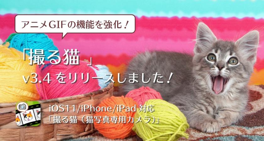 「撮る猫」v3.4 リリースノート