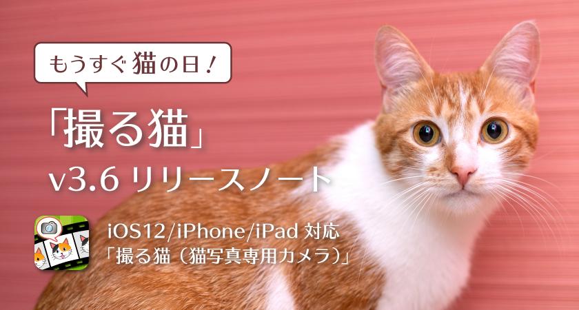 もうすぐ猫の日!「撮る猫」v3.6 リリースノート